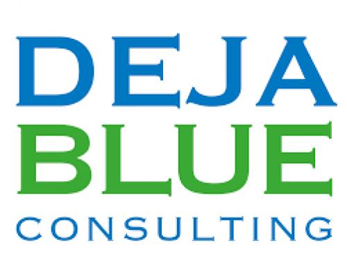 Deja Blue Consultin