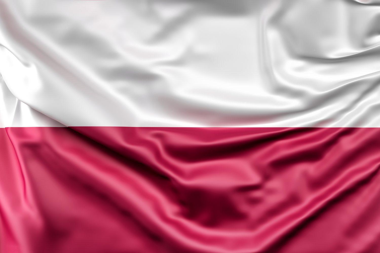 Cooperare B2B Polonia-România