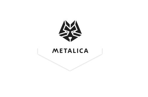 Prezentare Metalica SA
