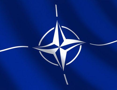 Oportunităţi de contracte cu agenţia NATO NSPA Luxemburg